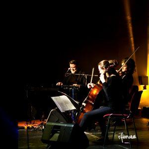 concert photography konzert dresden reiko fitzke falkenberg ralf schmidt johannstadthalle